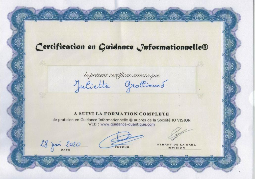 Certification en Guidance informationnelle Juliette Grollimund Depoorter Rennes